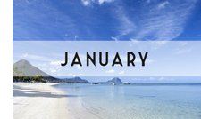 January Honeymmons
