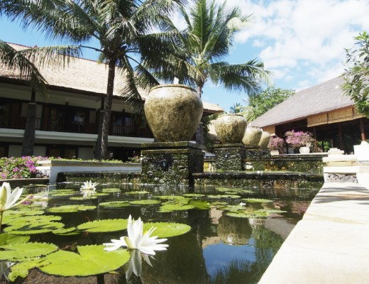 lotus pond spa village tembok bali