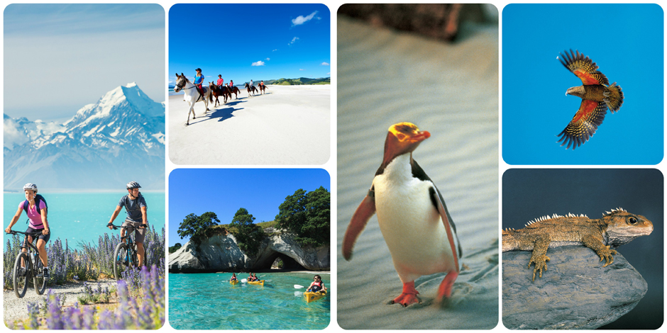 NewNew Zealand with Turquoise Holidays - Family Holidays