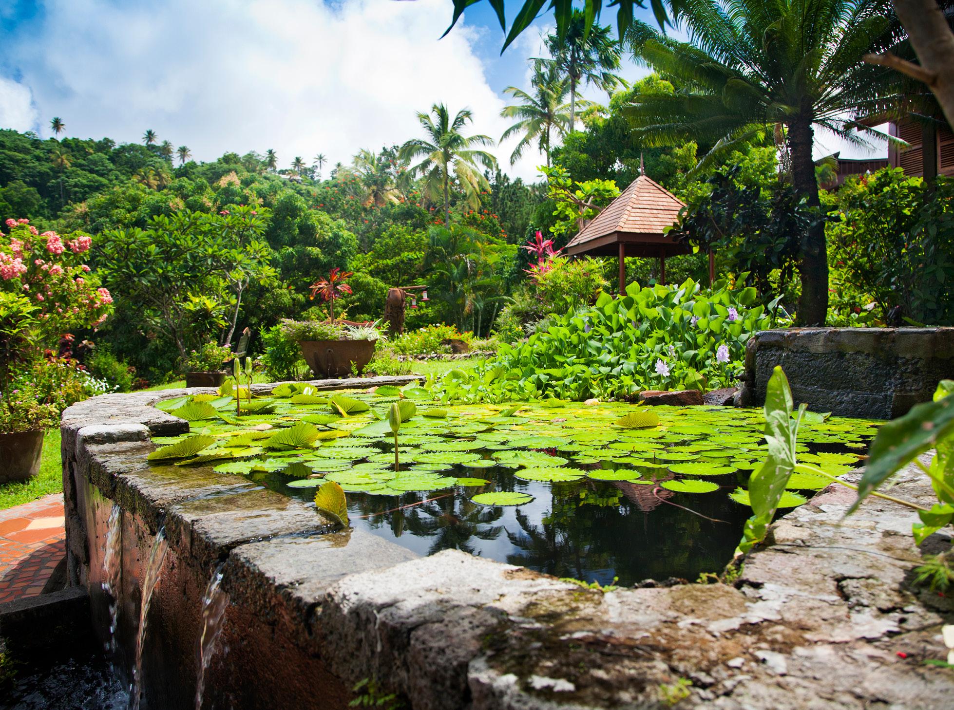 saint lucia gardens romantic couples