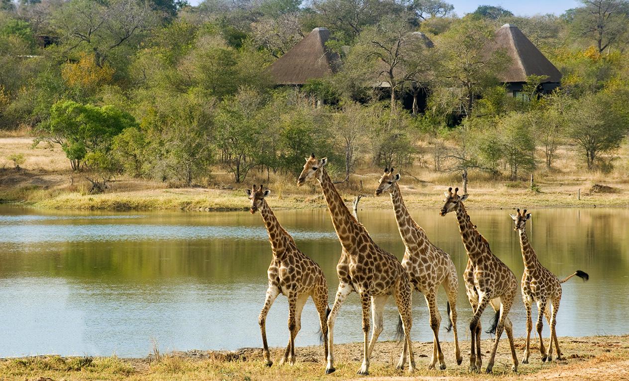 Top 9 Best Safari-Beach Holidays