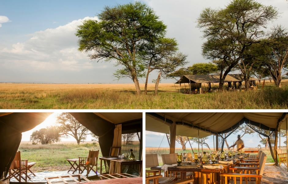 Serengeti safari camp Tanzania safari