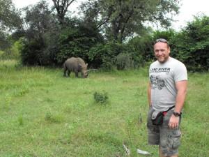 Botswana rhino