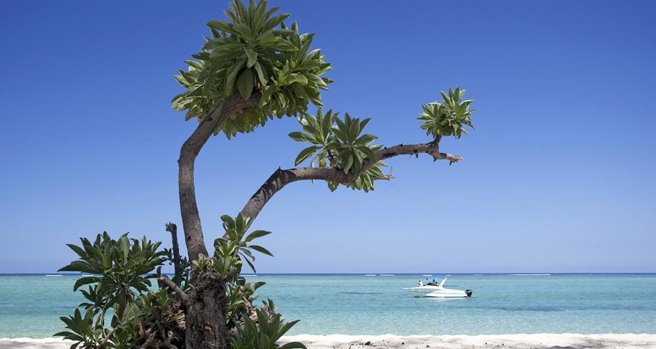 Mauritius Beach - Turquoise Holidays
