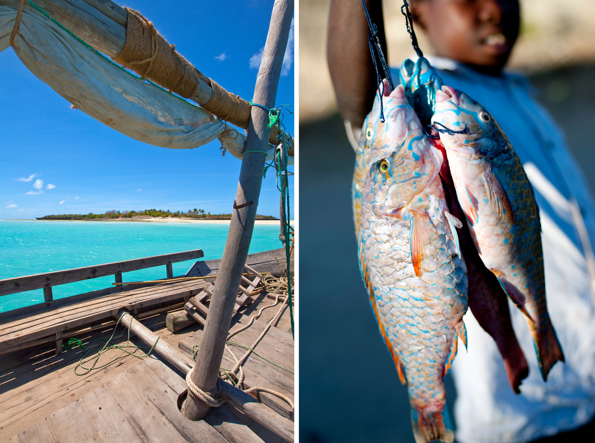dhow-safari-northern-mozambique-fishing
