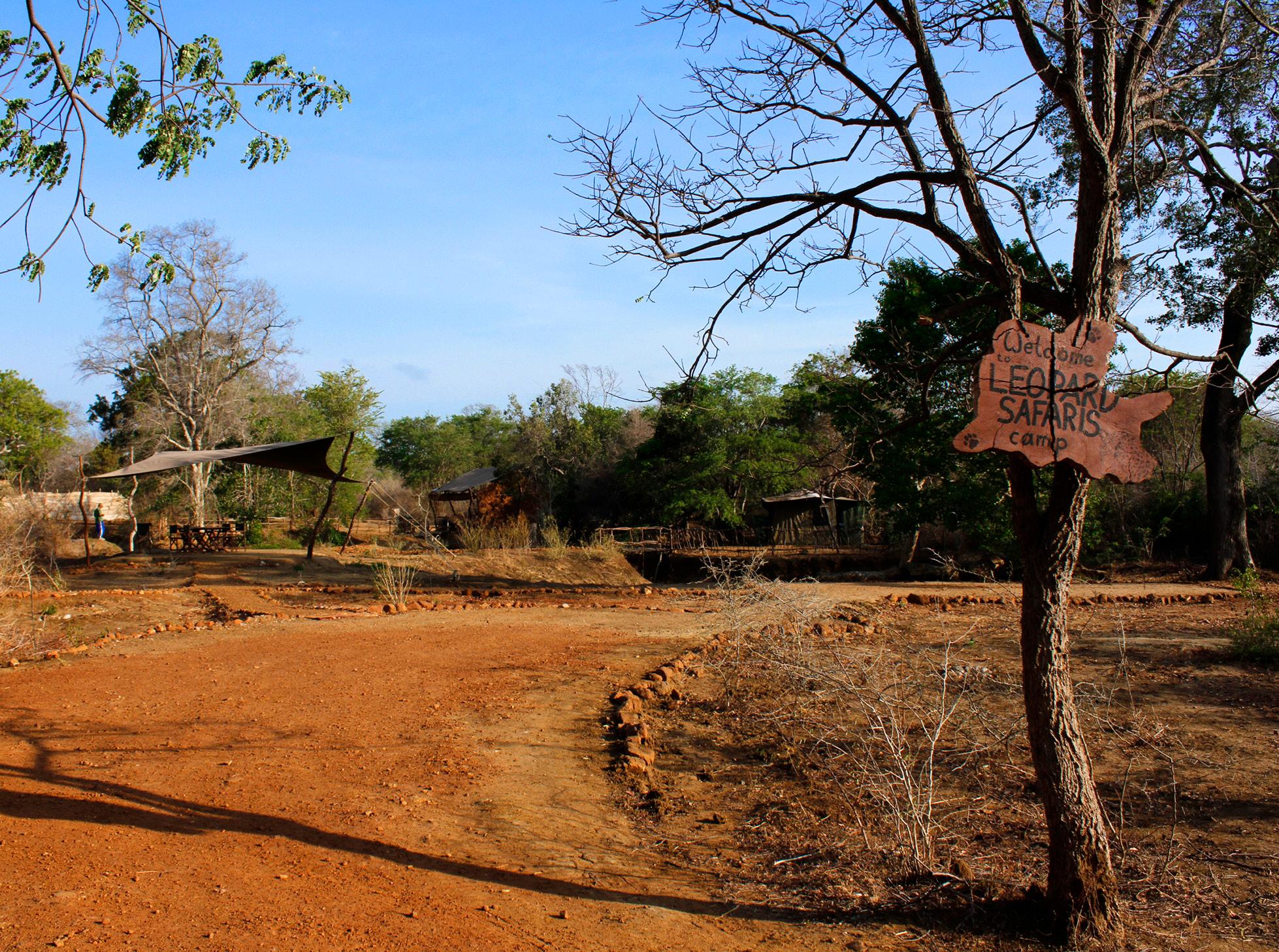 noel-rodrigo-leopard-safari-yala-national-park-sri-lanka-camp-2