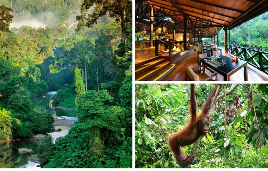 boreno malaysia honeymoon