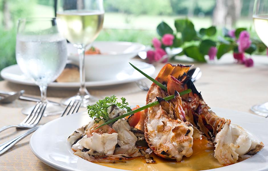Petit st vincent caribbean lobster