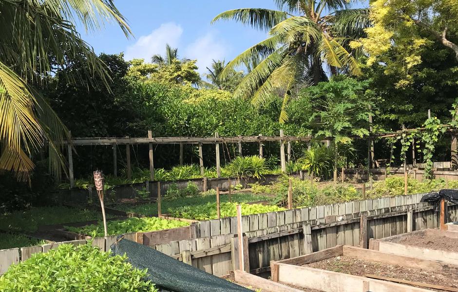 soneva fushi garden